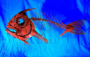 Red Snapper | Metal Fish Sculpture By Russell West