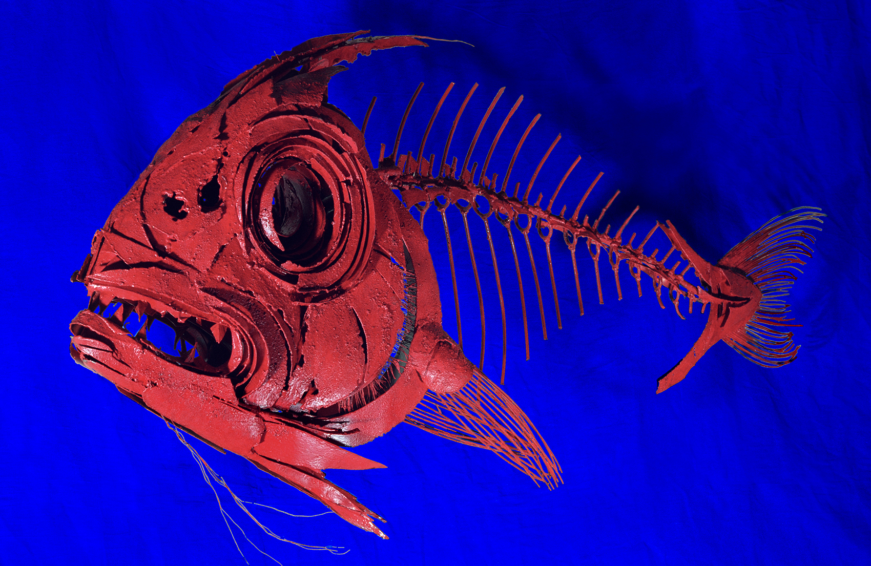 Close Up Of Red Snapper   Metal Fish Sculpture By Russell West