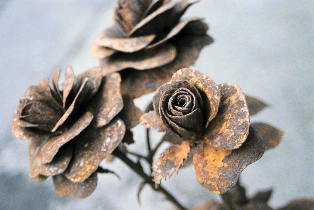 Close Up Of 'Roses'   Rusty Metal Sculpture By Russell West