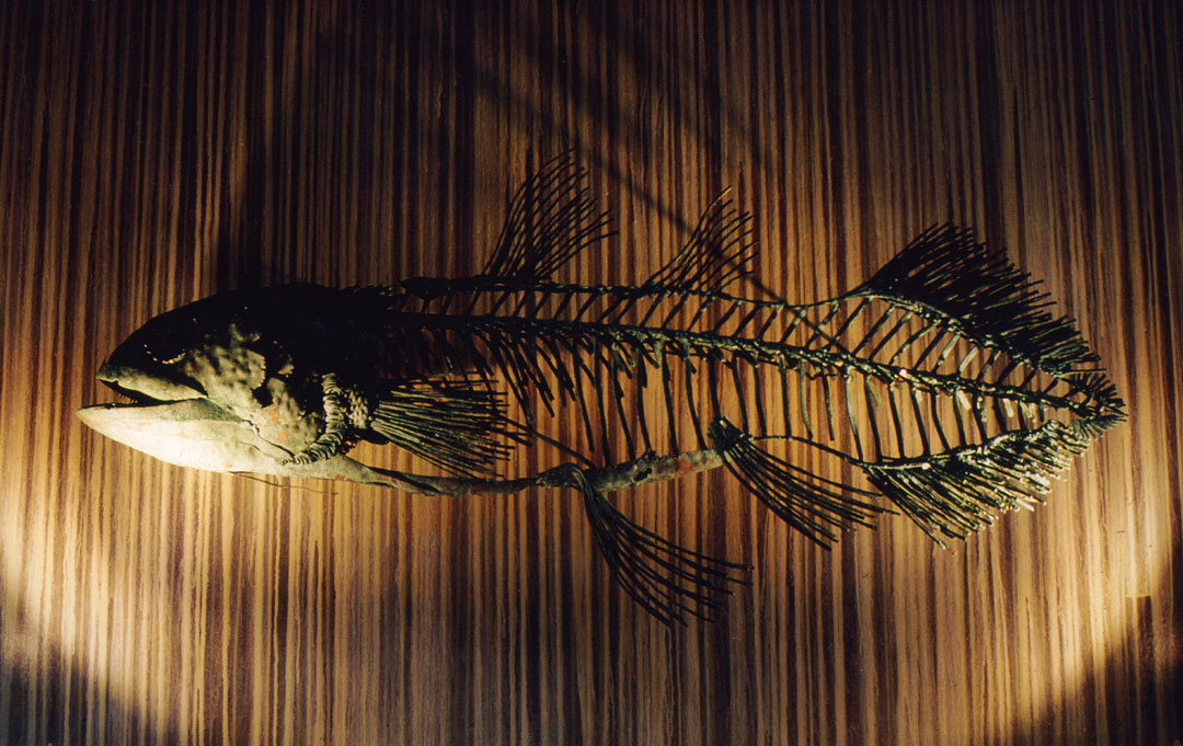 Fish XI Coelacanth - Metal Sculpture by Russell West