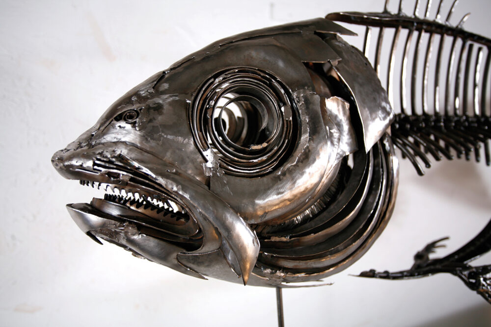 Close Up Of Fish XIX | Fish Wall Art | Metal Sculpture By Russell West